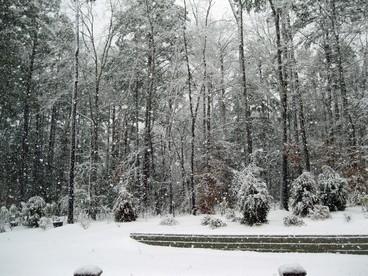 5035_Snowing_in_backyard_of_540_CM_2_13_2014