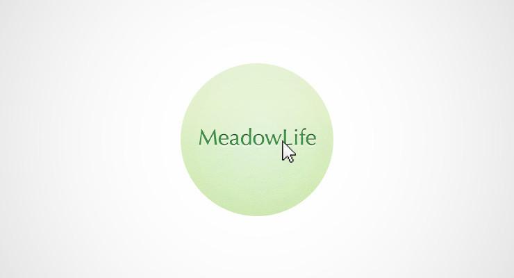 blog-meadowlife2