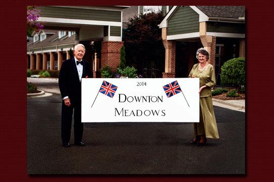 Downton Meadows